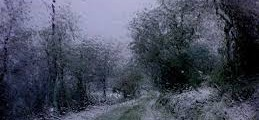 الشتاء 1