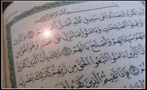 محمد في القرآن