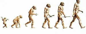 484132-church-says-sorry-to-charles-darwin-over-his-evolution-theory